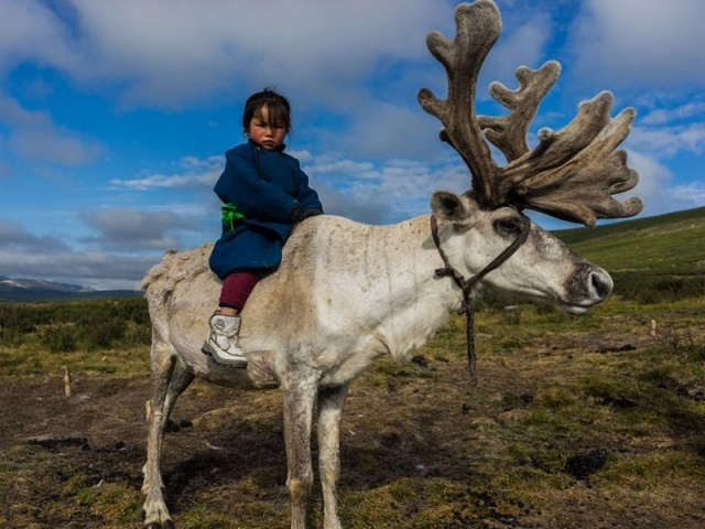 Natives of Russian Siberia and Mongolia's northernmost province of Khovsgol, Dukha herders depend on their reindeer for nearly all aspects of survival, as well as cultural and spiritual identity. But as modern development makes its way into their remote habitat, their ancient traditions are now at risk of dying out.