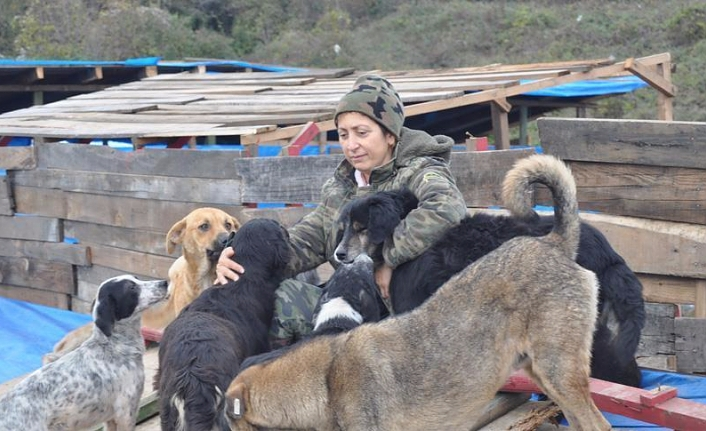 Animal rights activist on hunger strike in Turkey