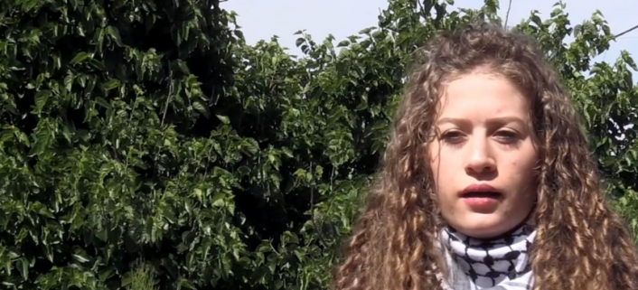 Resistance icon Ahed Tamimi highlights plight of Palestinian women