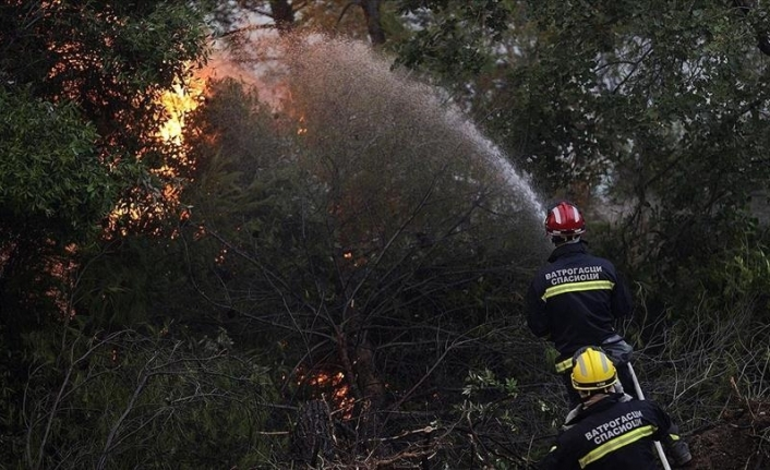 Greek premier apologizes over wildfires, vows action against responsible officials