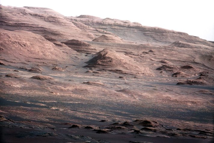 Mars mission should search for past microbial life: panel
