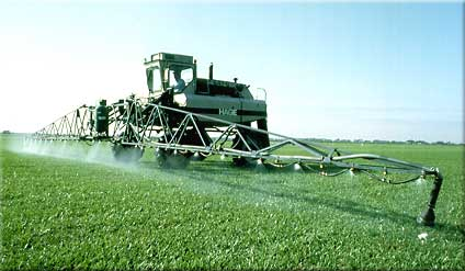 GMO crop technology boosts more strong insects