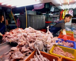 Hong Kong halts some U.S. poultry imports due to bird flu