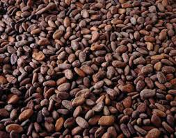 Eight people convicted of violating cocoa price in Ivory Coast
