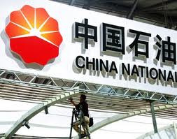 Chad suspends China firm CNPC for environmental violations