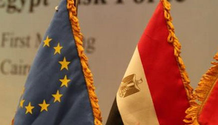 'Foreign positions' won't change Egypt decisions
