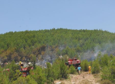 370 hectares of forest destroyed in southwest Turkey