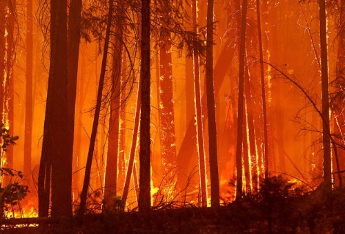 California wildfires force 125,000 to flee, one dead