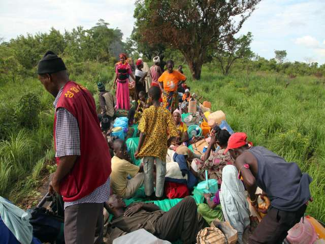 Refugee survey suggests higher death toll in Central Africa
