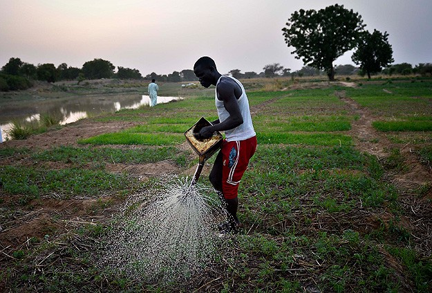 Foreign companies buying Africa's fertile land