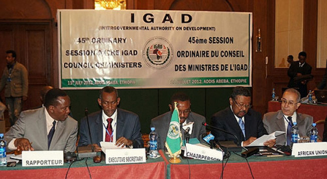 IGAD 'forcing' South Sudan agreement