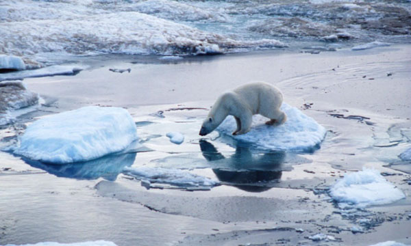 Hot arctic temperatures not observed as before