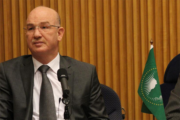 African Union reiterates solidarity with Turkey