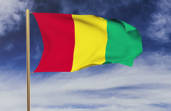 Guinea to hold local elections in Feb 2017