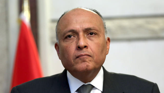 Egypt hopes to resume normal ties with Turkey: FM