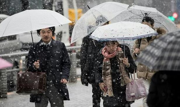 Tokyo gets first 'heavy snow' alert in four years