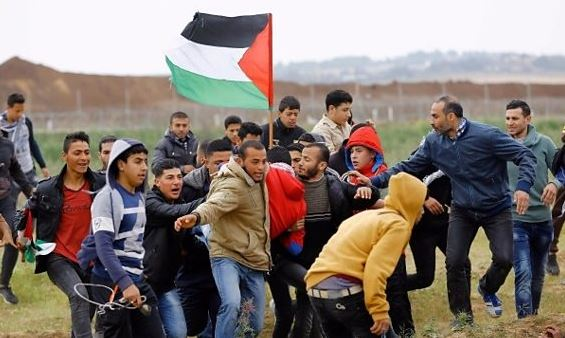 123 Palestinians martyred by Israel in Gaza since March