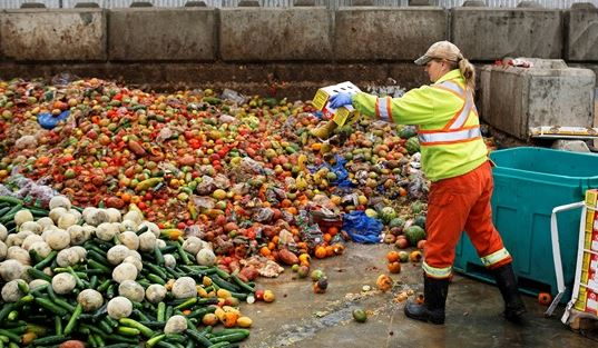 Canadians waste 2.2 tons of food annually