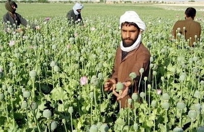 Afghan heroin production at all-time high: UN