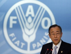 'Food production must rise 50 percent by 2030': UN