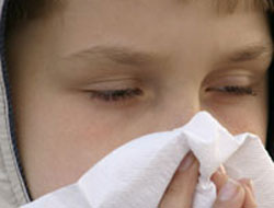 New finding links pollution to childhood allergies