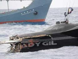 Whaling protest ship sinks after Japan collision