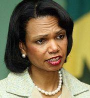 US Rice Says 'Time To Shake The Trees' Over Darfur