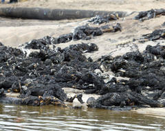 Deadly pipeline explosion hits Nigeria