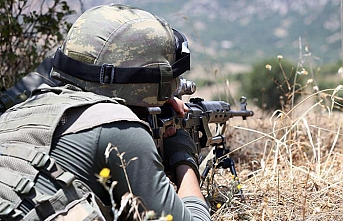 Turkish army 'neutralizes' 20 PKK terrorists in N. Iraq