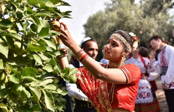 Citrus Festival gathers citizens from 30 different countries