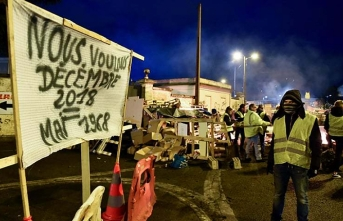 'Yellow vest' protests to cut Q4 growth