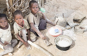 Over 100M people in Africa face food insecurity: Report