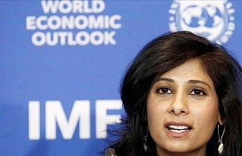 Post-pandemic structural reforms to return in full force: IMF chief economist