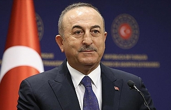 Turkish, Polish foreign ministers discuss COVID-19