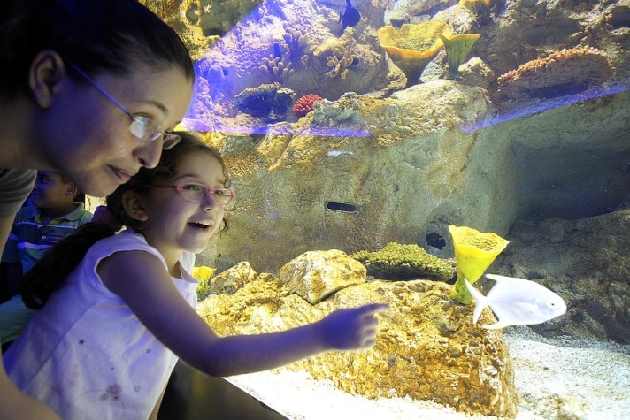 Switzerland: Europe's biggest freshwater aquarium opens