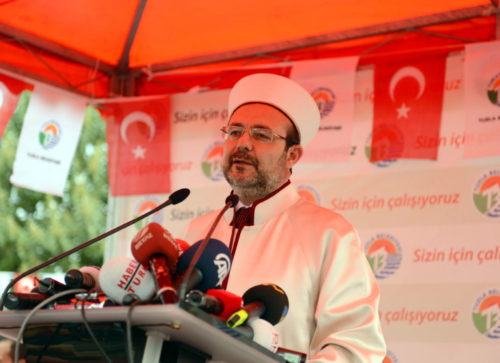 Turkish head of religious affairs slams 'Austrian Islam' bill