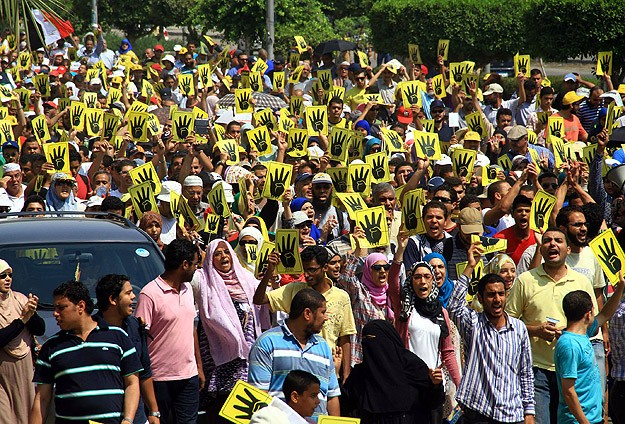 Egypt's interim gov't will destroy Brotherhood: Amnesty