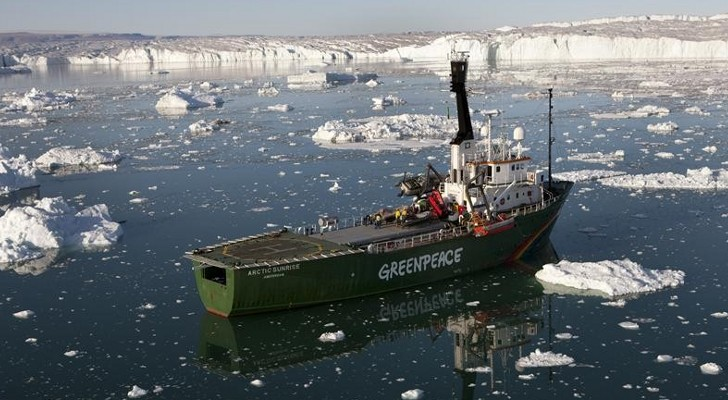 One Greenpeace activist granted bail