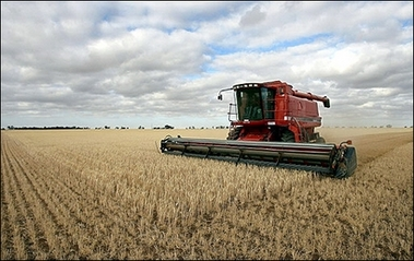 UK faces 'significant' shortage of farmland by 2030