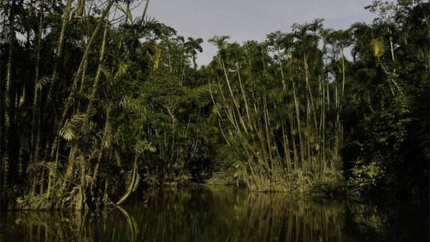 Brazil's opening of Amazon to mining sets off alarm