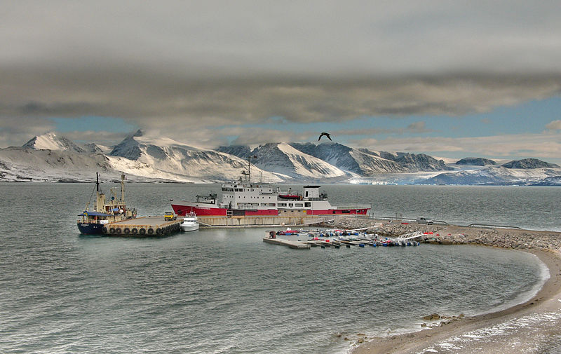 Chinese tycoon buys 100 hectares from Norway