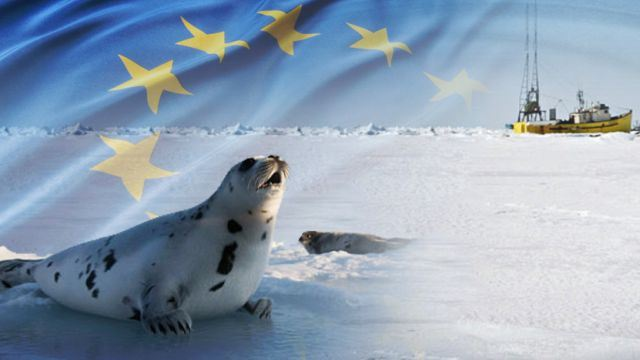 WTO says EU can ban seal imports on moral grounds