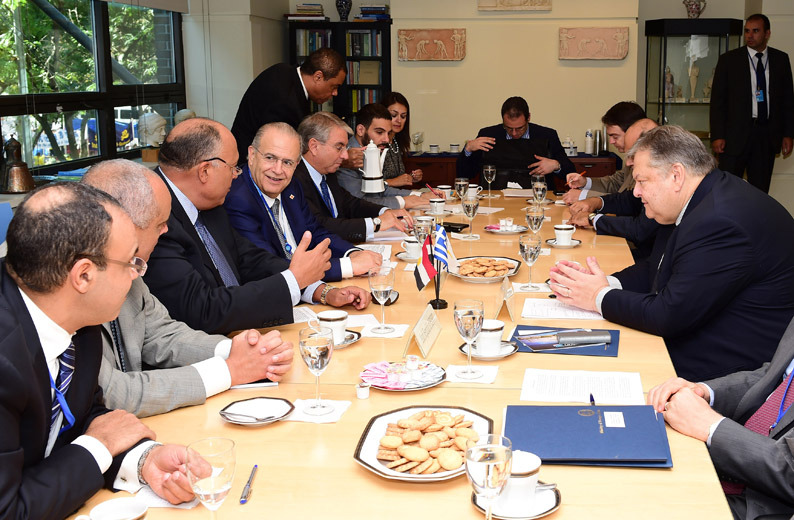 Greece, Greek Cyprus express support for Egypt govt