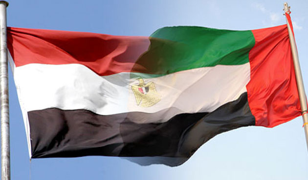 UAE says stands by Egypt in campaign against militants in Libya