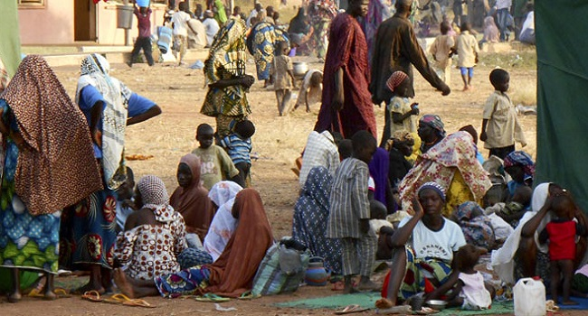 Nigeria sets up camps for IDPs in Borno state