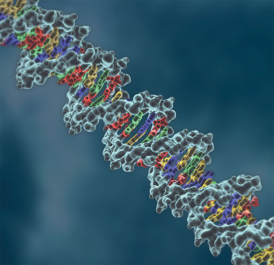 Gene therapy shows promise in cystic fibrosis