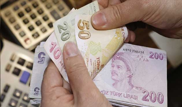 Syrians launch campaign to support Turkish lira