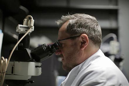 UK stem cell trial to cure blindness
