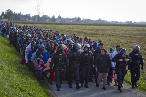 12,000 refugees arrive in Slovenia in 24h