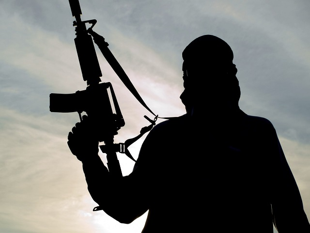 Two arrested in US over ISIL links